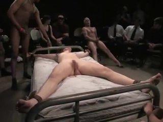 Bondaged mieze gets hart rangenommen