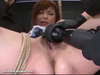giapponese, giocattoli, pulcino