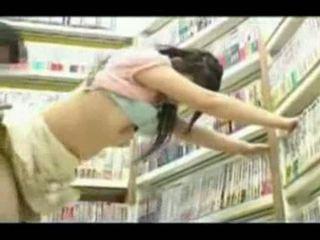 Könyvtáros
