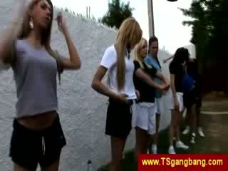 Sporty transsexuals começo louca gangbang