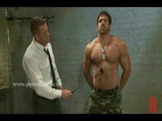 gay, muscle, hunk