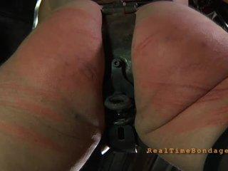 Gagged og bounded til tortur