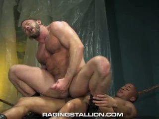 Shay Michaels, Lawson Kane