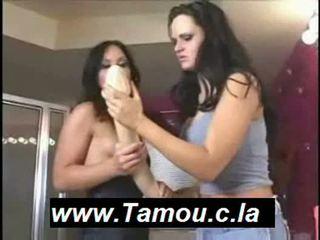 Lesbiennes anaal neuken