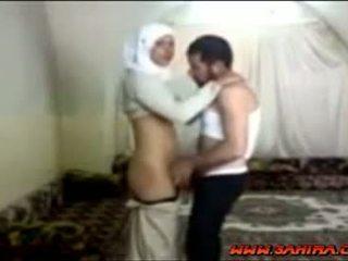 이집트의 hijab 단 정치 못한 여자