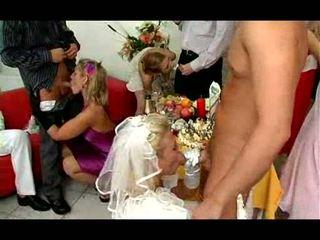 Wedding katelu turns into pesta seks video