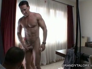 Breasty brandy taylor receives שלה כוס thumped על ידי a rock קשה זין