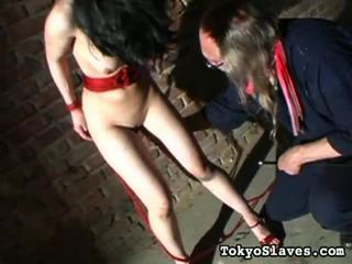 real hardcore sex free, check submission free, dominant