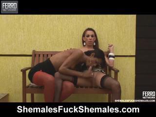 Shemales Fuck Shemales Scenes With Yasmin, Carol, Alexia