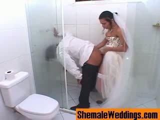 Bruna eccentrico shemale sposa
