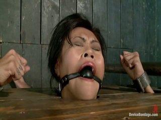 většina fucking machines, horký otroctví sledovat, bondage sex