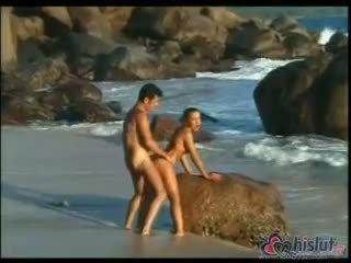 гаряча собачі дивіться, сперма реальний, ідеал пляж штаб