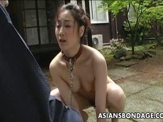 japanese, outdoor sex, bdsm