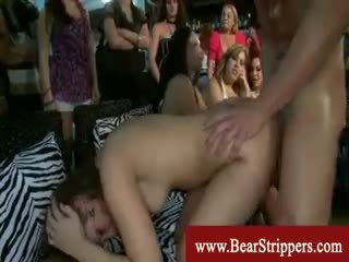 Amateurs getting poked av en dansing bjørn