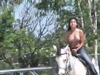 Kočka od thailand jazdenie a kôň