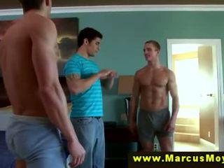 gay nice, gaysex more, homo