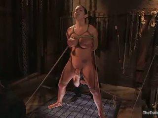 hd porn great, quality bondage sex most, hottest discipline