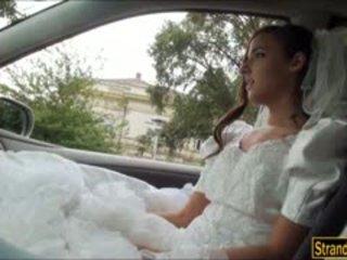 Bruid naar zijn amirah adara ditched door haar fiance en geneukt