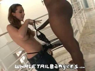 assfucking, velká prsa, anální sex