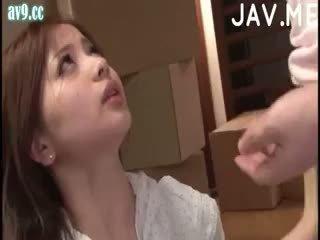 japonés, bebé, corrida