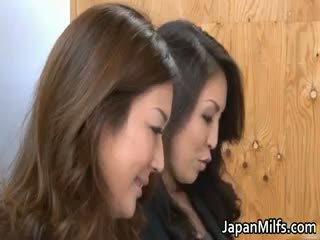 اليابانية, شرجي, حمار