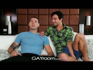 guy, stor pikk, gay