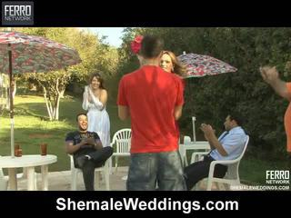 Caldi shemale weddings mov starring senna, alessandra, patricia_bismarck