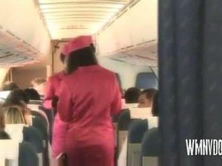 Horký airlines blondýnka