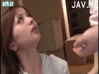 japonec, kotě, cumshot