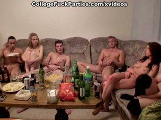 college, realität, betrunken